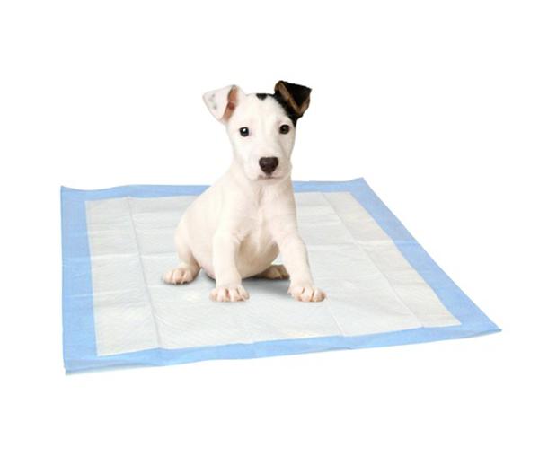 Toaletní podložky pro štěňata 10ks - 60 x 60 cm