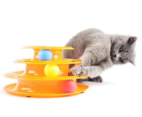 Hračka pro kočku Tower of tracks